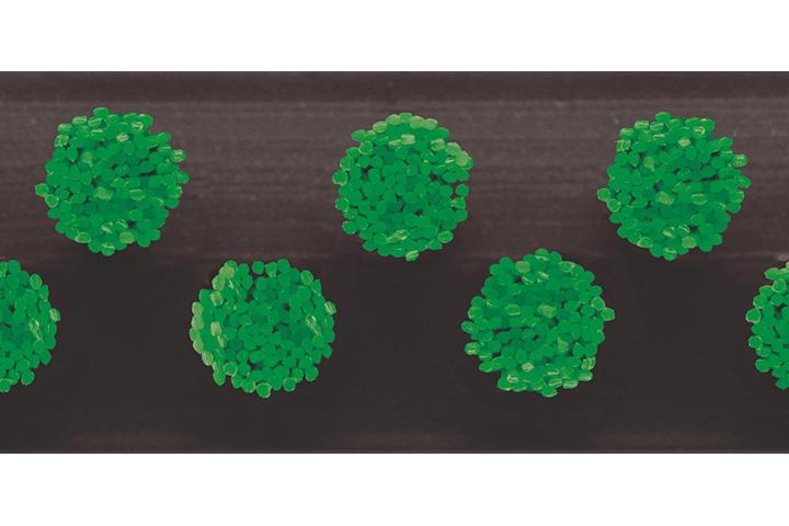 Borstelmat 5004 Groen