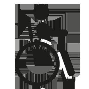 Rolstoel Icon