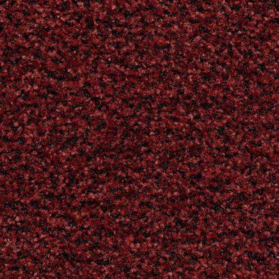 Coral Brush 5706 Brick Red