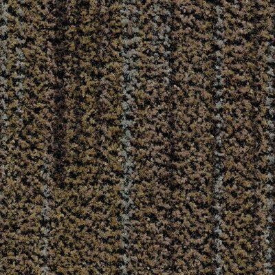 Coral Brush 5764 Petrified Grey